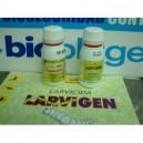 Pack anti piojillo (Camaleon +Larvigen) 60+60 ml